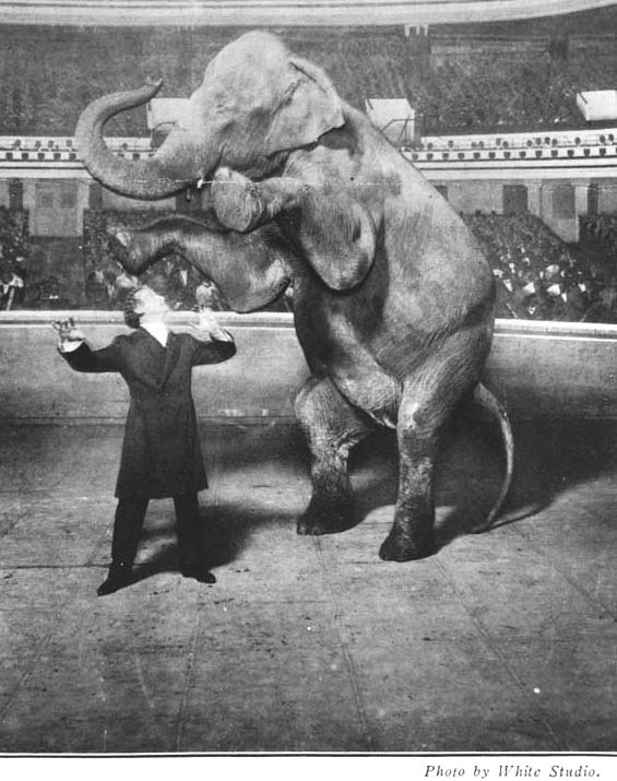 houdini's performance of making the elephant disappear